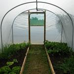 Quality PVC Greenhouse for your vegetables and flowers(HX57031-2) for sale