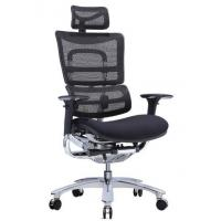 Quality New Design Ergonomic Mesh Chair with Footrest for sale