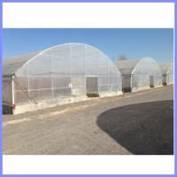Quality galvanized pipe greenhouse, vegetable greenhouse for sale