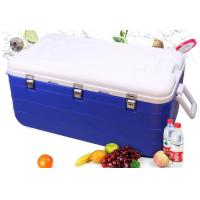 Quality 36 - 72h Heat Preservation Plastic IBC Container Ice Box 180L Volume for sale