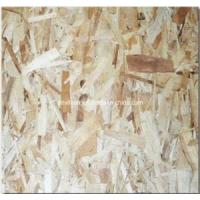Buy cheap OSB (Oriented Structural Board) (1220x2440) from wholesalers