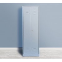 Quality 2 Swing Door Steel Cleaning Laundry Locker Cabinet Flat Packing for sale