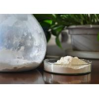 Quality Natural 20% Protein Shark Cartilage Powder White With 20% Calcium for sale