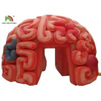 China Giant 4m  Inflatable Brain Replica Artificial Organs For Educational SGS EN71 on sale