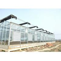Quality Simple Construction Agricultural Glass Greenhouse Venlo Type Greenhouse For Vegetables for sale
