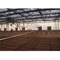 Quality Reducing Labor Greenhouse Drip Irrigation System Long Service Time For Strawberries for sale