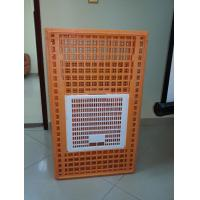 Quality Cheap Plastic Circulating Chicken Crate for Chicken Transport for sale for sale