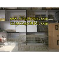 China Live Animal Traps/Cage on sale