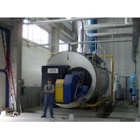 China convenient adjustment heat evenly Horizontal organic Coal Fired Natural Gas Steam Boiler on sale