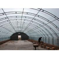 Quality Square Round Greenhouse Steel Pipe , Pre Galvanized Steel Pipe Rustproof for sale