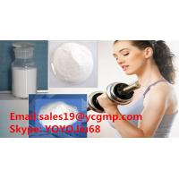 Quality White Powder 99% Healthy Deca Durabolin Nandrolone Decanoate Powder Muscle Growth for sale