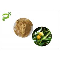 Quality Natural Plant Extract Powder Anti - Inflammatory Mangiferin From Mango Leaf for sale