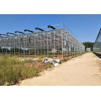 Quality Integrated Tunnel Polycarbonate Agricultural Greenhouse for sale