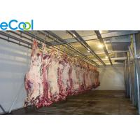 Quality 5000 Tons Large Industrial Cold Storage , Beef Processing Cold Storage Room for sale
