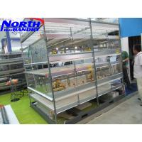 Automatic Chicken Feeding Systems for Poultry Cages