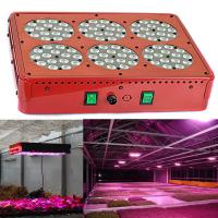 Quality cidly full spectrum apollo powerful grow led light for green house for sale