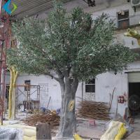 Large Artificial Olive Plant , Plastic Artificial Evergreen Trees For Indoor for sale