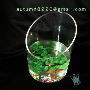 Modern acrylic aquarium fish tank