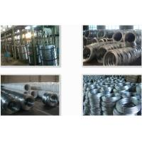 Quality Galvanized Wire for Wire Mesh for sale