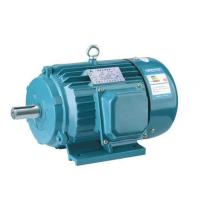 Quality Light Weight Low Vibrate 3 Phase Asynchronous Motors 0.75KW -315 KW for sale