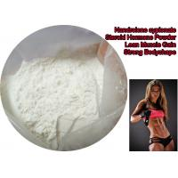 China Bulking Cycle Nandrolone Decanoate Steroid Powder / Deca Durabolin Muscle Mass Steroid on sale