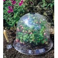 Quality 2012 Plastic Cloche on sale for plants HX35012 for sale