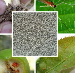 Quality CAS 59669-26-0 Molluscicides Pesticides Thiodicarb 10% WP 20% EC 40% SP for sale