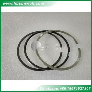 China Cummins 6BT5.9 Engine Cummins Piston Ring 3802230 3802231 3802056 3802050 3802421 3904531 3918315 3932520 on sale