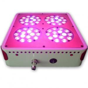 Quality Apollo 4 LED grow light grow light 60 * 3W greenhouse planting nursery lamp lights up for sale