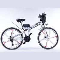 Quality Hard Wearing Foldable Electric Bike , 350w 48 Volt Ebike Brushless Motor for sale