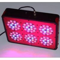 Quality Aeroponics System Apollo-10 LED Grow Light for Greenhouse,Phantom Dimmable LED Hydro Light for sale