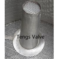 Stainless steel fabricated basket type temperary strainer & cone hat filter