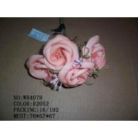 Quality Christmas Flower for sale