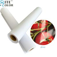 """Quality Primed 24"""" 36"""" Glossy / Luster RC Inkjet Photo Paper Roll For Pigment Ink Printing for sale"""