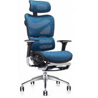 Quality New Design Executive China Ergonomic Mesh Chair with Footrest for sale