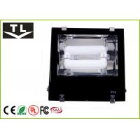 Quality Compact Modern Induction Flood Light 200W Bright Aluminum Body for sale