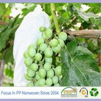 Quality Best landscape fabric for agriculture weed control fruit bags for sale