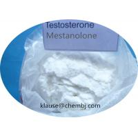White Powder Anabolic Steroids Testosterone Mestanolone For Male Body Building 521-11-9 for sale