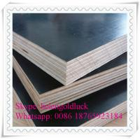Qingdao Gold Luck International Trade Co., Ltd.