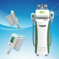 Multifunctional 5 Handles Cryolipolysis Slimming Machine / Fat Frozen System for Mecial Beauty Clinic Use