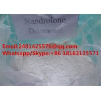 Muscle Growth Nandrolone Steroids DECA Durabolin / Nandrolone Decanoate CAS 360-70-3