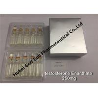 China testosterone enanthate Injectable Anabolic Steroids injection 250mg/ml 1ml/vial super quality on sale