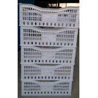 Quality Special vented plastic crate for strawberries for sale