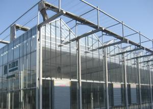 Quality Sided Ventilated Cooling Pad Multi Span Greenhouse for sale
