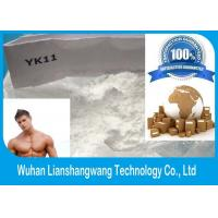 Quality YK -11 Healthy Bodybuilding Supplements SARMs Steroids white Powder CAS 431579-34-9 for sale