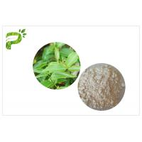 Quality CAS 989 51 5 Egcg Green Tea Leaf Extract , Green Tea Supplements For Weight Loss for sale