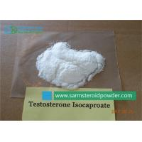 China CAS 15262-86-9 Testosterone Steroid Powder , Testosterone Isocaproate With Lab Recipes on sale