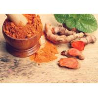 Quality 95% Curcumin Turmeric Extract Powder Food Grade USP Current Standard GMP / DMF Certificate for sale