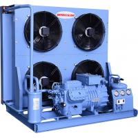 China Blue Semi Hermetic Condensing Unit High Efficiency Loudness And Stability on sale