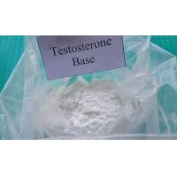 Pharmaceutical Raw Testosterone Powder Testosterone Base CAS 58-22-0 Muscle Enhancement Steroids for Male for sale